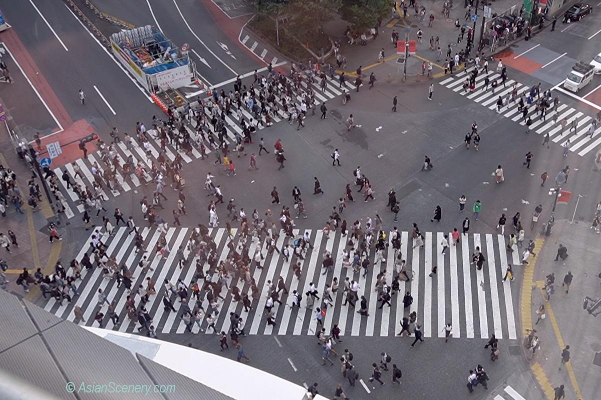 ShibuyaCrossing20191023-01