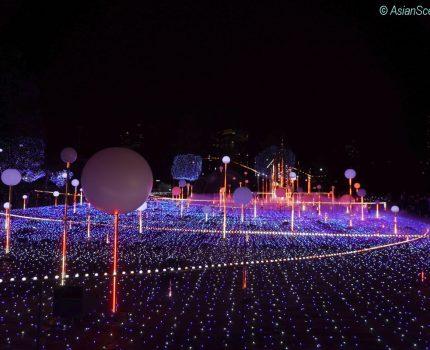 Winter illumination at Tokyo Midtown 2019 東京ミッドタウンイルミネーション2019